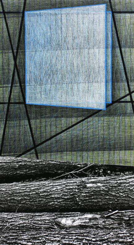 Meina Schellander: Stamm (Zeit-Land-Anteil) Innere Frequenz